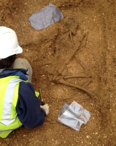 Warrior excavation. (c) MAP/PA